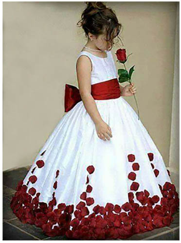 birthday dress ref image